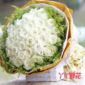 33朵白玫瑰同城送花