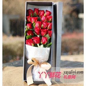 19只A級紅玫瑰禮盒