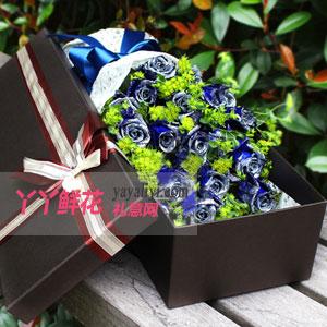 19朵藍色妖姬深色鮮花禮盒