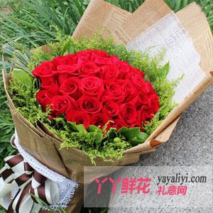 情丝-33朵红玫瑰
