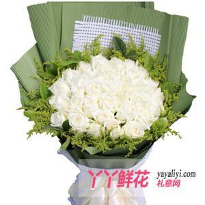 鮮花33支白玫瑰時尚花束