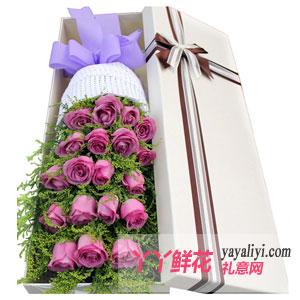 圣誕節送女友19朵紫色玫瑰鮮花禮盒