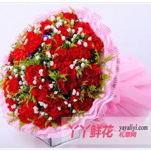 祝福-鲜花19枝红色康乃馨