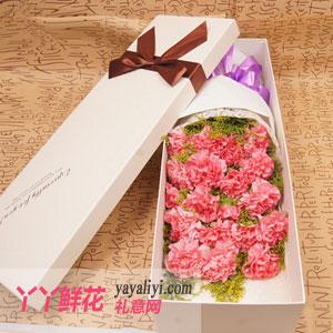 阳光-19支粉色康乃馨高档礼盒