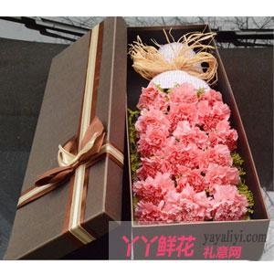 19朵粉色康乃馨高檔禮盒