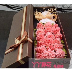 樸實的幸福-19朵粉色康乃馨高檔禮盒