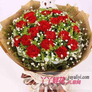 19朵红色康乃馨1只小熊