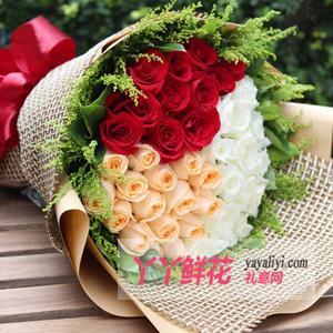 33朵三色玫瑰鮮花速遞