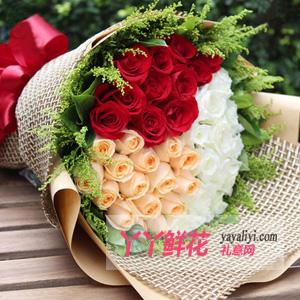 真情告白-33朵三色玫瑰鮮花速遞