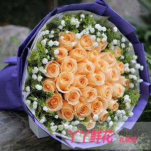 鲜花33枝香槟玫瑰