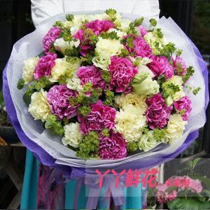 29朵混色康乃馨母親節預定