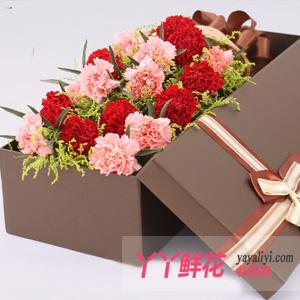 美麗的祝福-19朵混色康乃馨禮盒