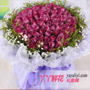 99朵紫玫瑰(優雅女人香...