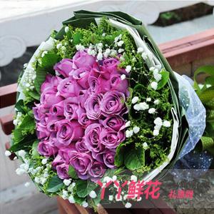 鮮花速遞33枝紫玫瑰