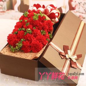 19朵紅色康乃馨禮盒