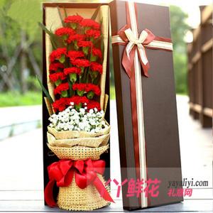 19朵红色康乃馨礼盒