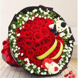 33朵红玫瑰花2只小熊西...