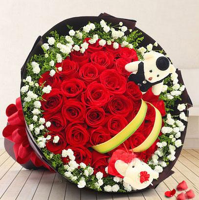 33朵红玫瑰花2只小熊送花