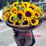 19朵向日葵黃鶯搭配