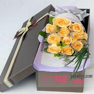 11朵香檳玫瑰水晶草禮盒
