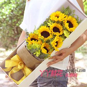 梦想起航 - 7朵向日葵礼盒