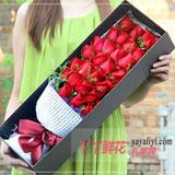 33朵紅玫瑰黃鶯搭配咖色禮盒