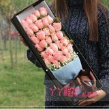 33朵粉玫瑰滿天星禮盒