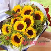 9朵向日葵扇形花束