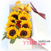 9朵向日葵2紅色康乃馨禮盒