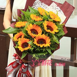 剛做完手術的老人送9朵向日葵黃鶯間插