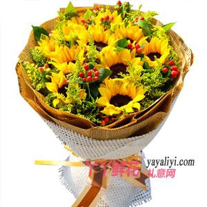 幸福花开-11朵向日葵相思豆黄莺绿叶点缀