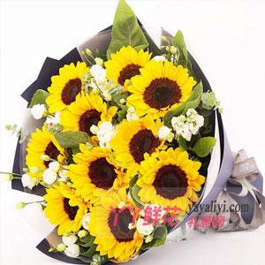 父亲节如果要送花送什么花比较好?