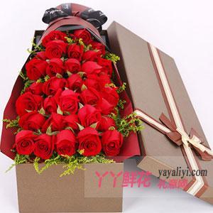 33朵紅玫瑰咖色禮盒