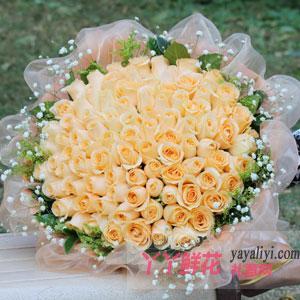 99朵香槟玫瑰外围满天星绿叶