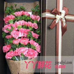 19枝粉色康乃馨礼盒