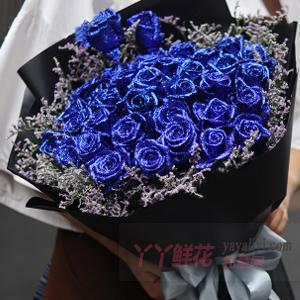 情人節送33朵藍色妖姬搭配情人草