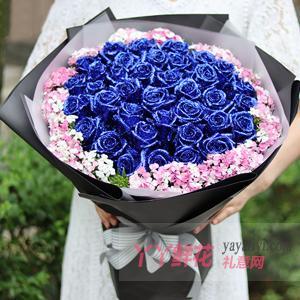 生日送33朵蓝色妖姬外围相思梅