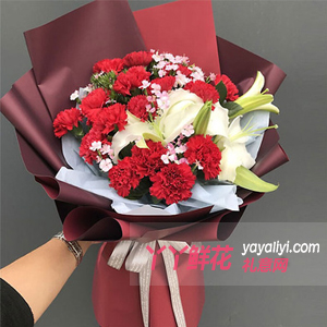 妈妈的吻-19枝红色康乃馨2枝多头白百合点缀粉色石竹梅
