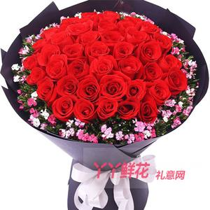 33朵顶级红玫瑰相思梅丰...