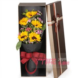 5支向日葵搭配黃鶯石竹梅咖色禮盒