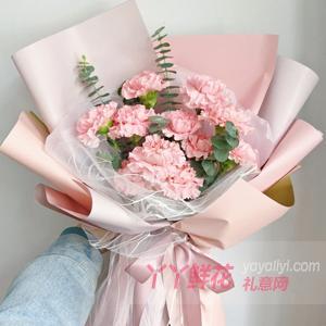 11朵浅粉色康乃馨尤加利...
