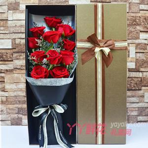 11朵紅玫瑰搭配情人草咖...