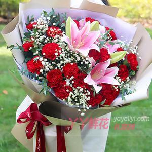 33朵红色康乃馨2枝粉色百合搭配绿叶满天星