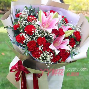 老人过生日送33朵红色康乃馨2枝粉色百合