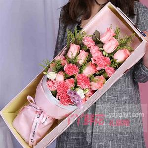 11朵粉色康乃馨11朵粉...
