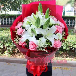 11朵粉色康乃馨8朵白百...
