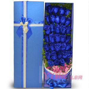 33朵蓝色妖姬搭配粉色相思梅蓝色礼盒
